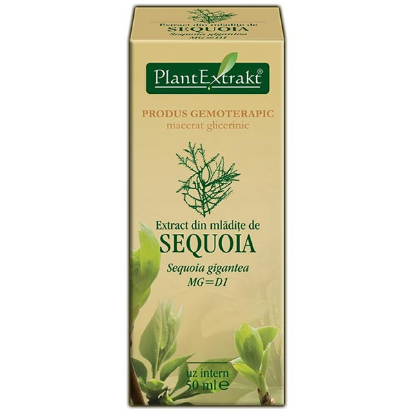 PlantExtract Extract sequoia 50 ml